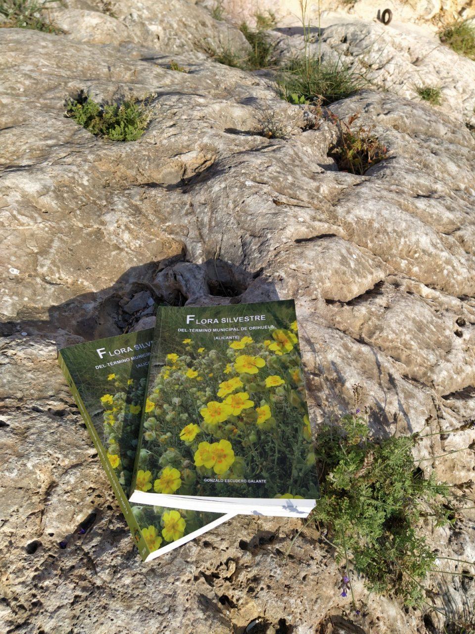 Medio Ambiente edita el libro 'Flora Silvestre del Término Municipal de Orihuela' 6