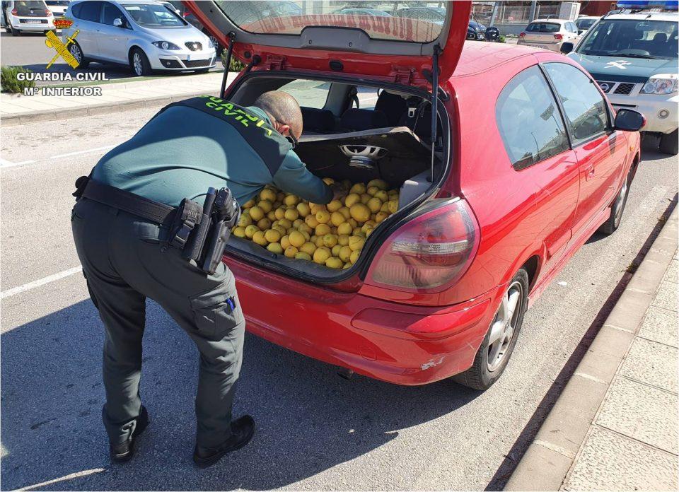 Detenidos dos hombres en Almoradí por estafa en la compra de 128 toneladas de fruta 6