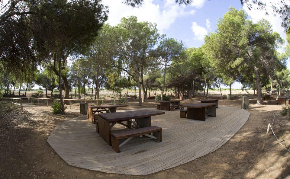 La oficina de turismo del Paseo de Torrevieja se convierte en PIC del Parque Natural de las Lagunas de La Mata 6