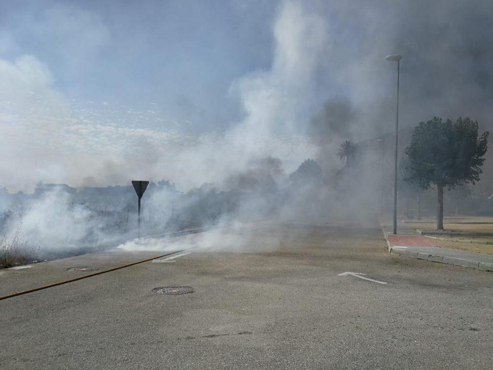 Incendio de matorral y cañaveral entre Cox y Granja 6