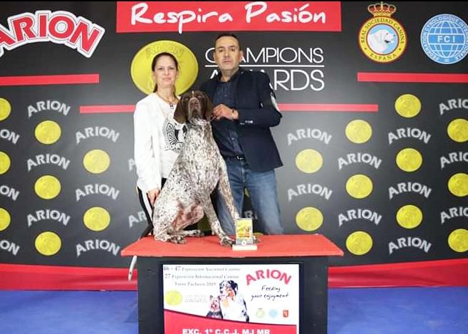 El perro más bello de España es de Almoradí 6
