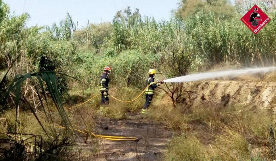 Los bomberos extinguen un incendio de matorral y pino en La Campaneta 6