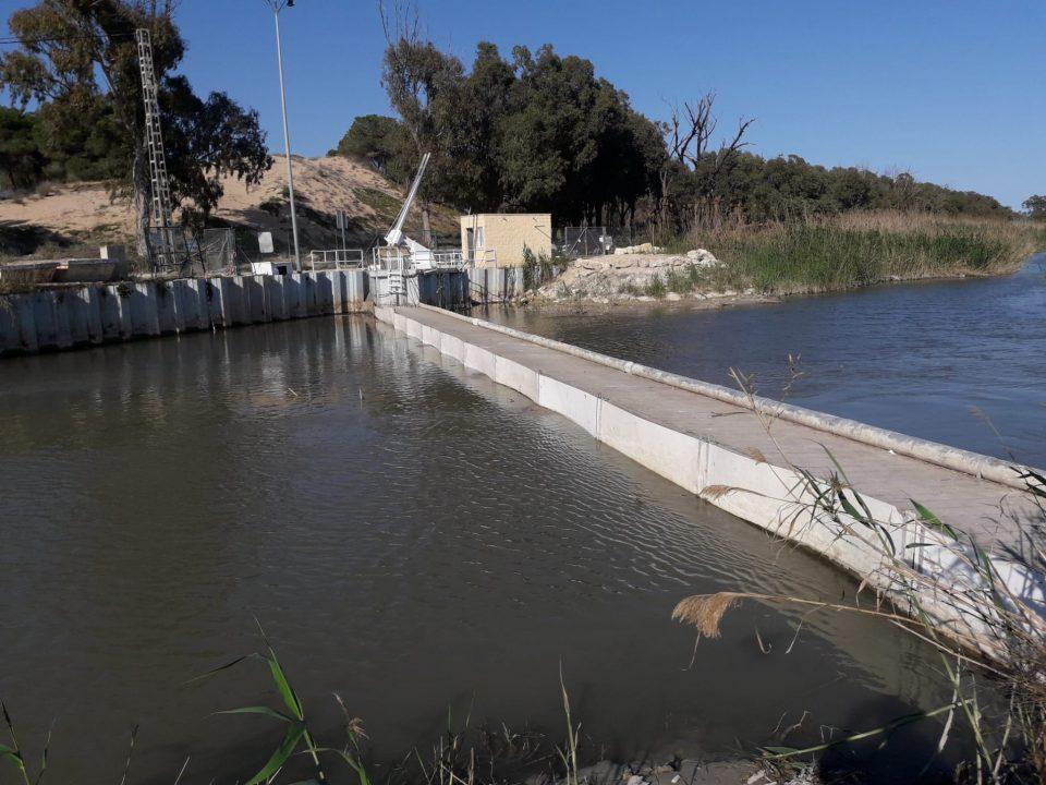 La CHS quiere activar la reja automática en la desembocadura del río Segura 6