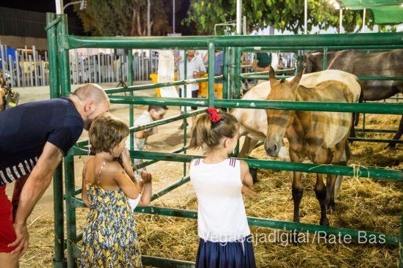 La espectacularidad de los caballos hechiza a los asistentes a FEGADO 104