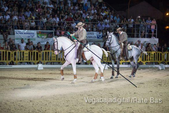 La espectacularidad de los caballos hechiza a los asistentes a FEGADO 101