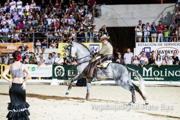 La espectacularidad de los caballos hechiza a los asistentes a FEGADO 93