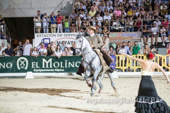 La espectacularidad de los caballos hechiza a los asistentes a FEGADO 92