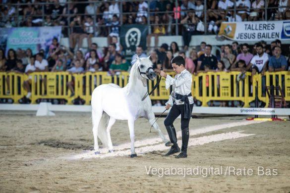 La espectacularidad de los caballos hechiza a los asistentes a FEGADO 90