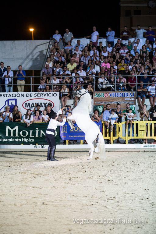 La espectacularidad de los caballos hechiza a los asistentes a FEGADO 89