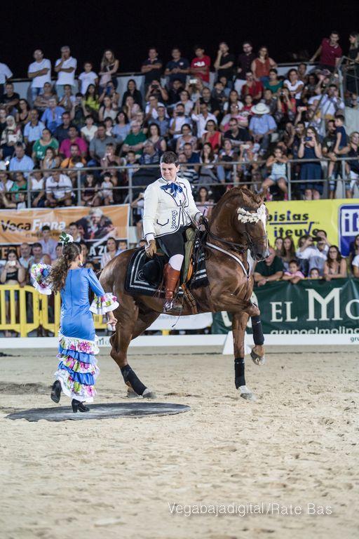 La espectacularidad de los caballos hechiza a los asistentes a FEGADO 85