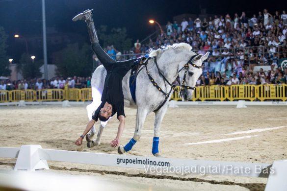 La espectacularidad de los caballos hechiza a los asistentes a FEGADO 74