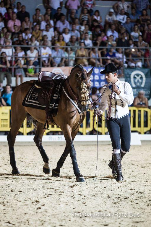 La espectacularidad de los caballos hechiza a los asistentes a FEGADO 71
