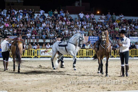 La espectacularidad de los caballos hechiza a los asistentes a FEGADO 70