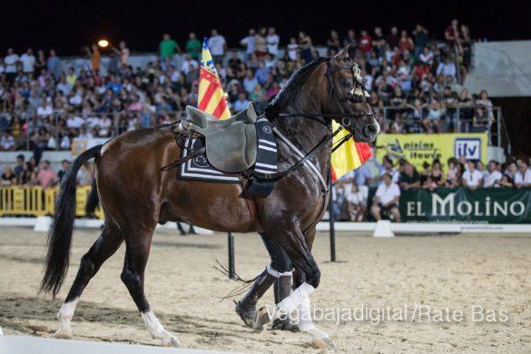 La espectacularidad de los caballos hechiza a los asistentes a FEGADO 69