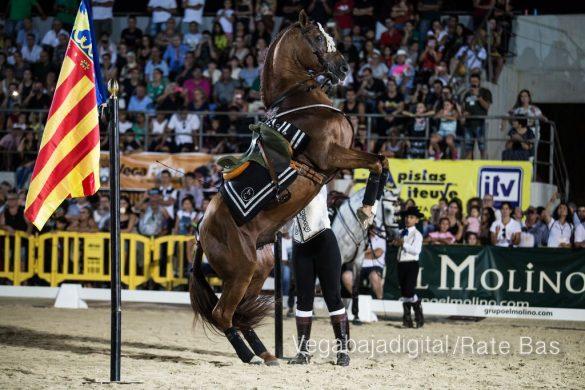La espectacularidad de los caballos hechiza a los asistentes a FEGADO 65