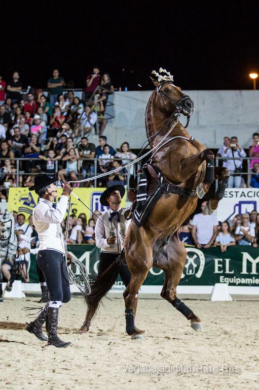 La espectacularidad de los caballos hechiza a los asistentes a FEGADO 63