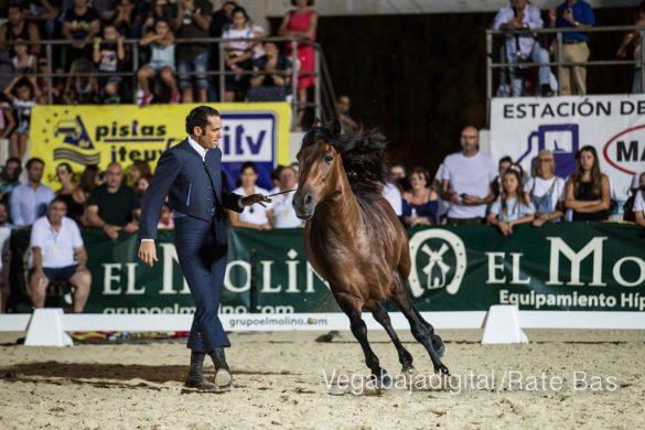 La espectacularidad de los caballos hechiza a los asistentes a FEGADO 57