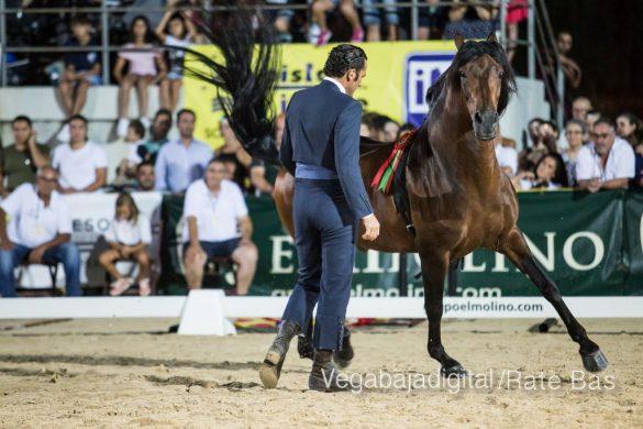 La espectacularidad de los caballos hechiza a los asistentes a FEGADO 56