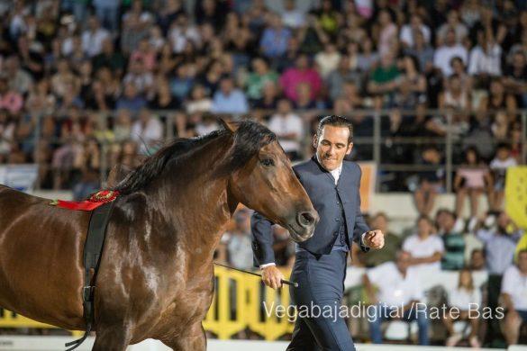 La espectacularidad de los caballos hechiza a los asistentes a FEGADO 55