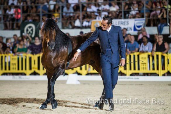 La espectacularidad de los caballos hechiza a los asistentes a FEGADO 53