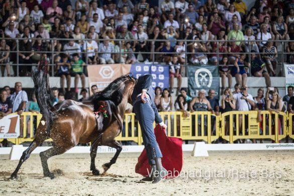 La espectacularidad de los caballos hechiza a los asistentes a FEGADO 46