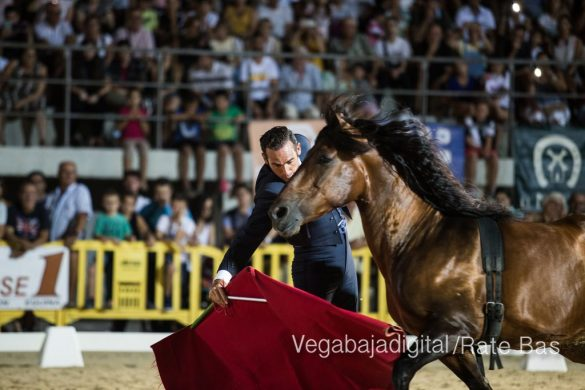La espectacularidad de los caballos hechiza a los asistentes a FEGADO 45