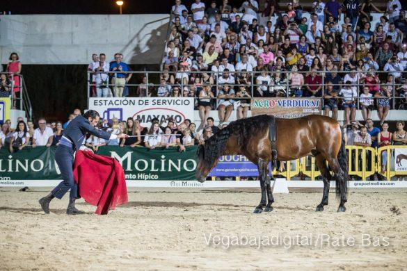 La espectacularidad de los caballos hechiza a los asistentes a FEGADO 41