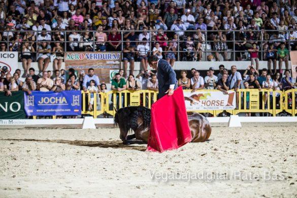 La espectacularidad de los caballos hechiza a los asistentes a FEGADO 40