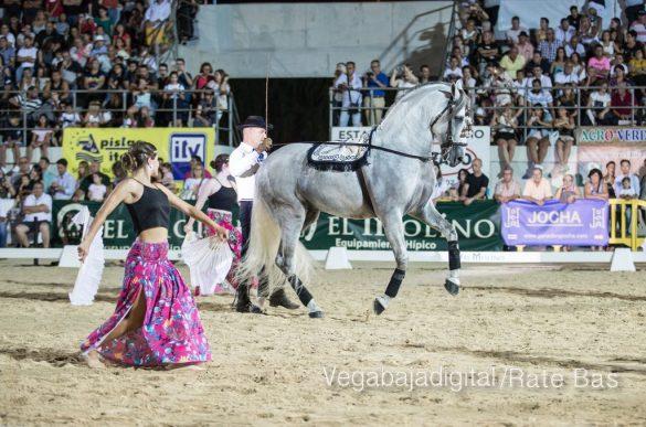 La espectacularidad de los caballos hechiza a los asistentes a FEGADO 16