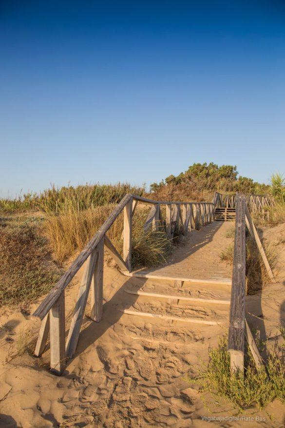 Guardamar, gran destino turístico en imágenes 32