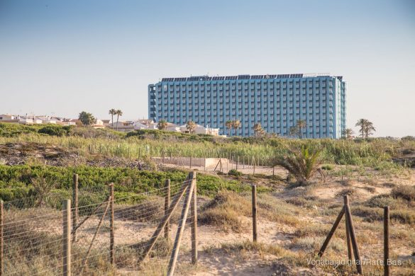 Guardamar, gran destino turístico en imágenes 37