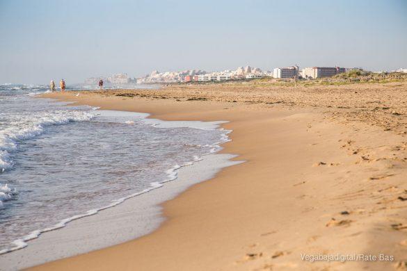 Guardamar, gran destino turístico en imágenes 40
