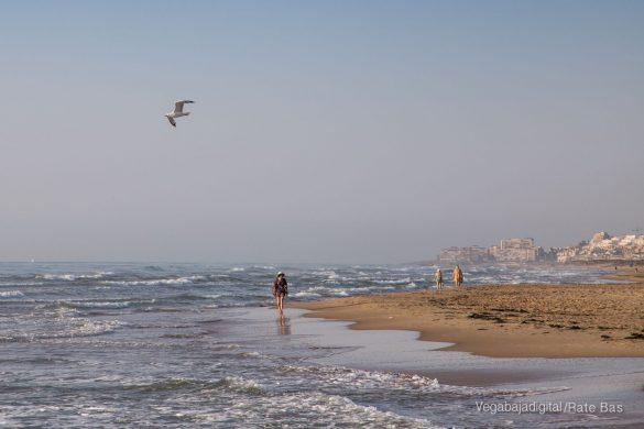 Guardamar, gran destino turístico en imágenes 41