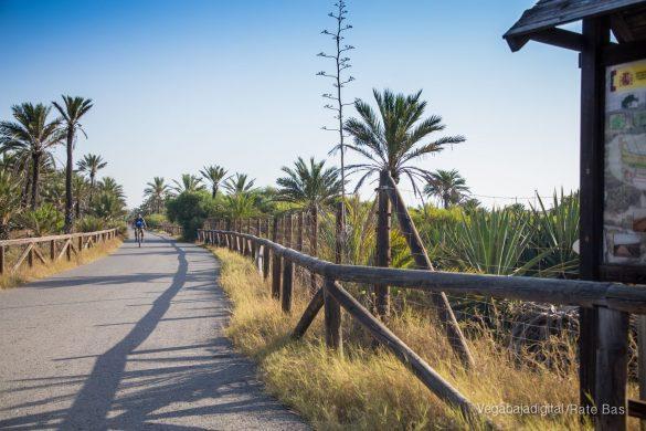 Guardamar, gran destino turístico en imágenes 46