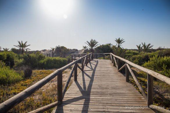 Guardamar, gran destino turístico en imágenes 47