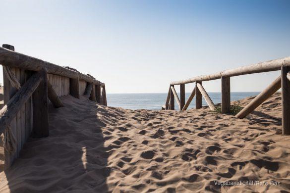Guardamar, gran destino turístico en imágenes 48