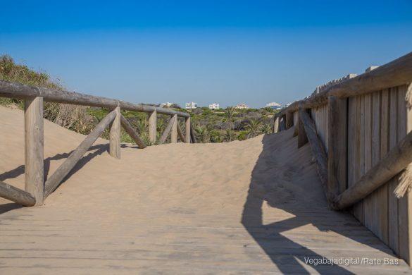 Guardamar, gran destino turístico en imágenes 52