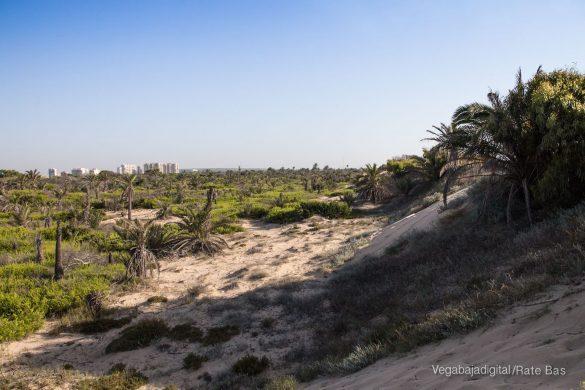 Guardamar, gran destino turístico en imágenes 53