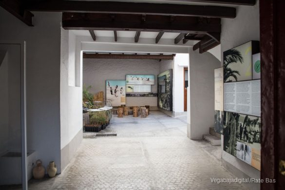 Guardamar, gran destino turístico en imágenes 68