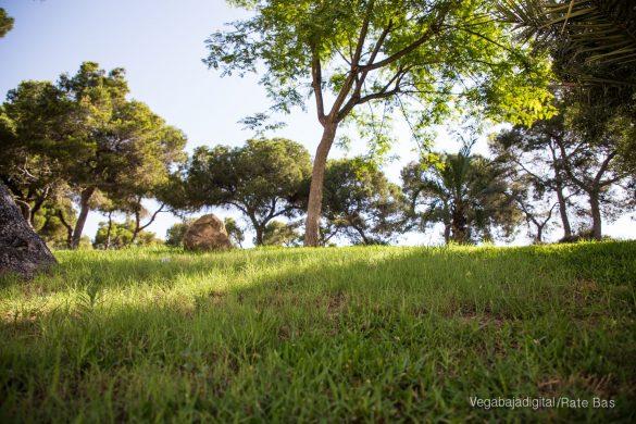 Guardamar, gran destino turístico en imágenes 76