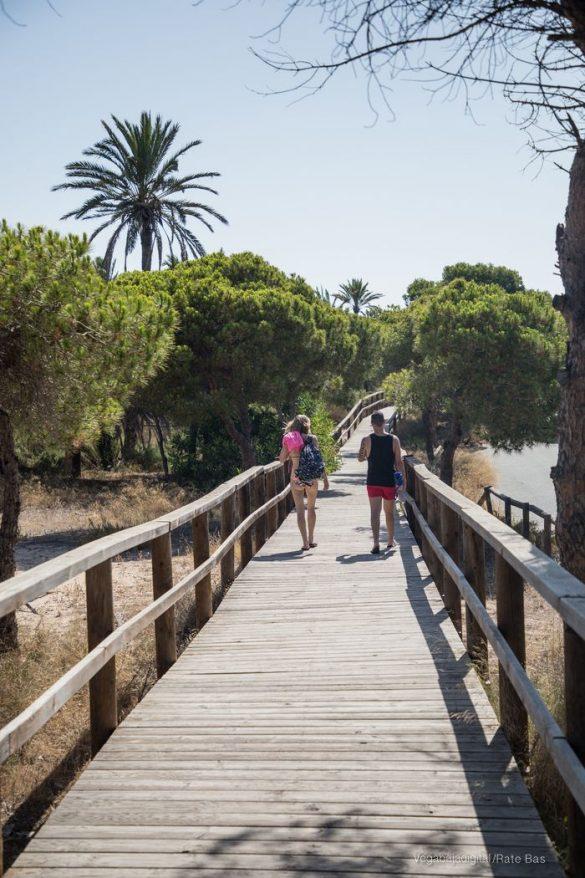 Guardamar, gran destino turístico en imágenes 81