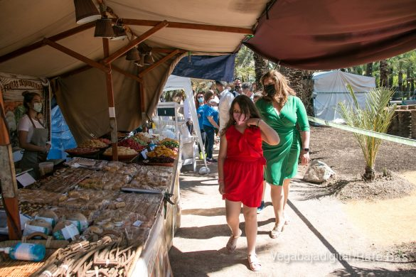 FOTOGALERÍA | Actividades Día del Medio Ambiente en Orihuela 20