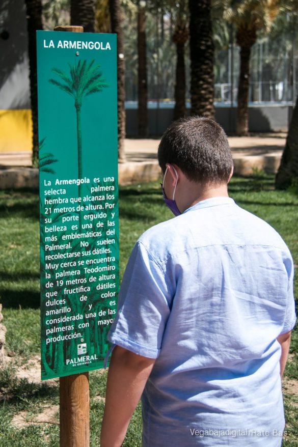 FOTOGALERÍA | Actividades Día del Medio Ambiente en Orihuela 66