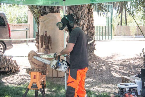 FOTOGALERÍA | Actividades Día del Medio Ambiente en Orihuela 75