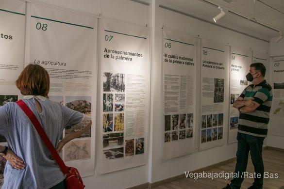 FOTOGALERÍA | Actividades Día del Medio Ambiente en Orihuela 81