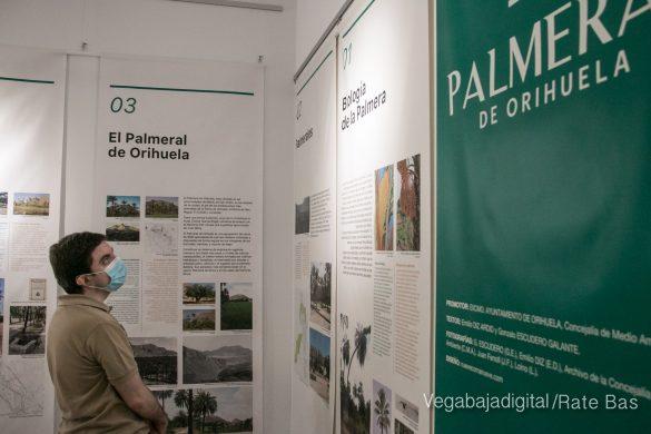 FOTOGALERÍA | Actividades Día del Medio Ambiente en Orihuela 82