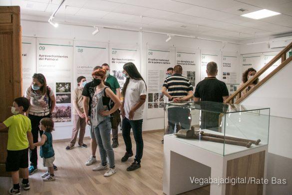 FOTOGALERÍA | Actividades Día del Medio Ambiente en Orihuela 83
