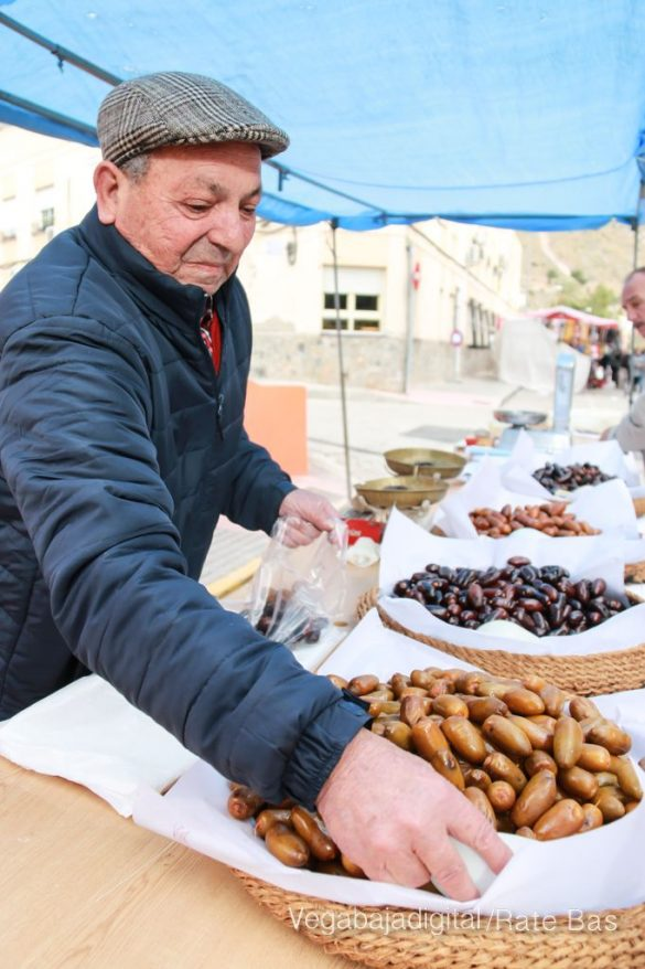 La mejores imágenes de las fiestas de San Antón en Orihuela 24