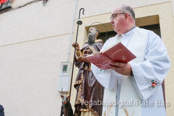La mejores imágenes de las fiestas de San Antón en Orihuela 42