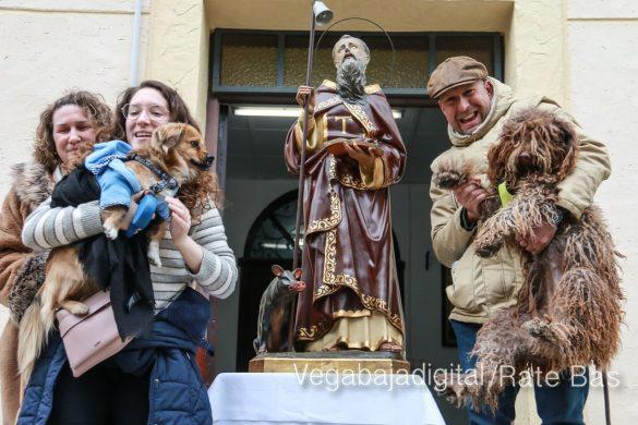 La mejores imágenes de las fiestas de San Antón en Orihuela 46